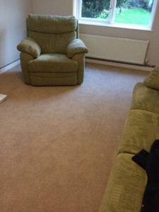 Mr H, St Ives 50oz Wool Carpet